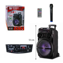 12-inch, bluetooth speaker, microphone,LED